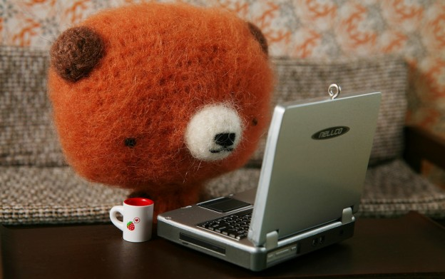 laptop_bear